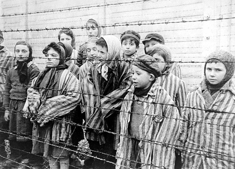 Children Held in Auschwitz for Death and Medical Experimentation