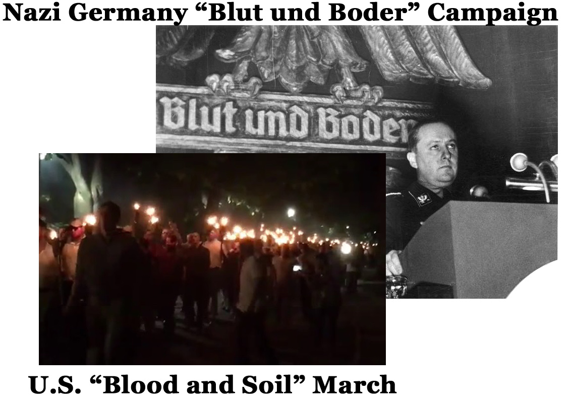Blood-and-Soil-Campaign
